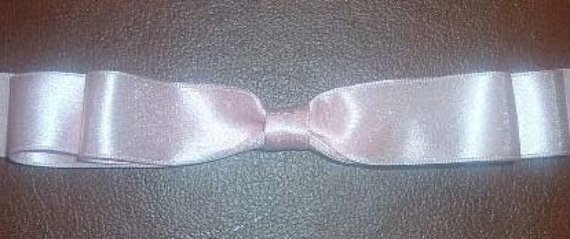 Double Shoulder Bows